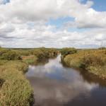 第4話サロベツ川